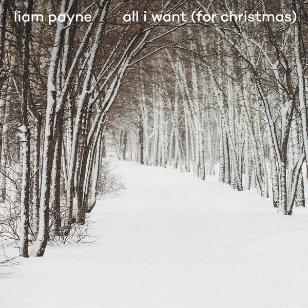Liam Payne - All I Want (For Christmas)